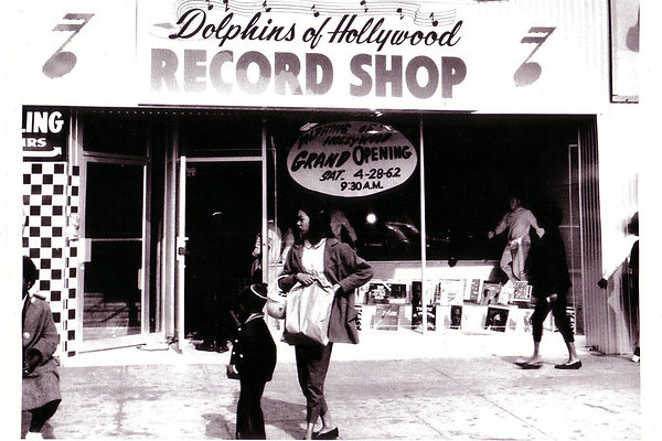 Dolphins Record Store