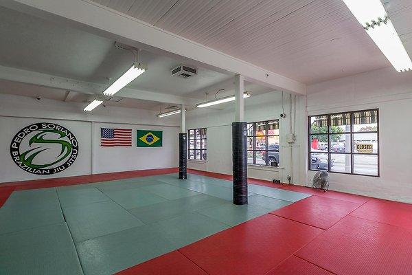 Pedro Soriano Brazilian Jiu-Jitsu (San Pedro)